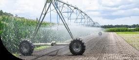 Agriculture management