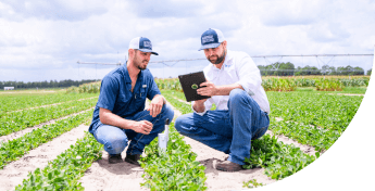 Agriculture testing by two professionals